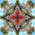 Cuban Kaleidoscope by Marla Craven