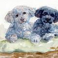 Cuddlies by Sheila Wedegis