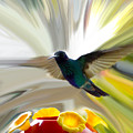 Cuenca Hummingbird Series 1 by Al Bourassa