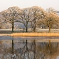 Cumbria, England Lake Scenic With by John Short