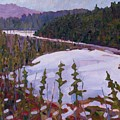 Cunnington Marsh by Phil Chadwick