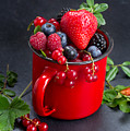 Cup Of Fresh Berries by Anastasy Yarmolovich