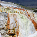 Cupid Spring At Mammoth Hot Springs by Louise Heusinkveld