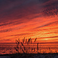Currituck Sunset II by Thomas Morrow