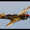 Curtis P-40n Warhawk by Tommy Anderson
