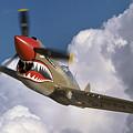Curtiss P-40n Warhawk by Larry McManus