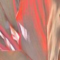Curves Ahead by Florene Welebny