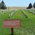 Custer National Cemetery by Charles Robinson