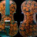 Custom Gliga Viola by Dino Muradian