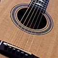 Custom Made Guitar by Garry Gay