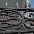 Custom Snake Gate by Dale Powell