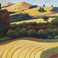 Cut Grass by Gary Coleman