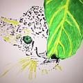 Cute Animal by Jack Bunds