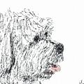 Cute Dog by Diane Chandler