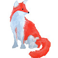 Cute Fox With Fluffy Tail by Dominic White