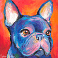 Cute French Bulldog Painting Prints by Svetlana Novikova