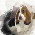 Cute Little Basset Artesien Normand Puppy by Maria Astedt