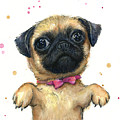 Cute Pug Puppy by Olga Shvartsur