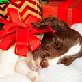 Cute Puppy With Red Bow Sleeping By Gifts by Susan Schmitz