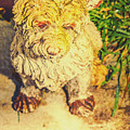 Cute Weathered White Garden Ornament Of A Dog by Jorgo Photography - Wall Art Gallery