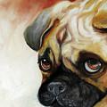 Cutie Pie Pug by Marcia Baldwin