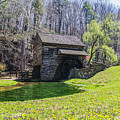 Cuttalossa Mill In The Springtime by Bill Cannon