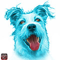Cyan Terrier Mix 2989 - Wb by James Ahn