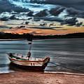 Cyanotype by Paulo Carvalho