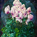 Cyclamen In Orbit by John Lautermilch