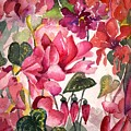 Cyclamen by Mindy Newman