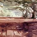 Cypress At Moss Beach by Donald Maier