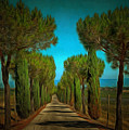 Cypress Avenue by Dorothy Berry-Lound