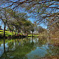 Cypress Bend Park Reflections by Judy Vincent