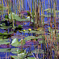 Cypress Pond Tranquility by William Tasker
