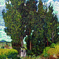 Cypresses With Two Figures, By Vincent Van Gogh, 1889-1890, Krol by Peter Barritt