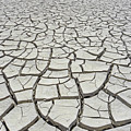 D17845-dried Mud Patterns  by Ed  Cooper Photography