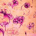 Da Vinci Flower Study Pink And Orange By Da Vinci by Tony Rubino