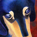 Dachshund - Oscar The Shelter Dog by Annie Nelson