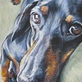 Dachshund Black And Tan by Lee Ann Shepard