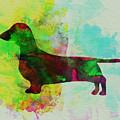 Dachshund Watercolor by Naxart Studio