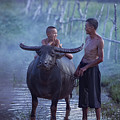 Dad And Child Happy To Live In The Countryside,thailand, Vietnam by Somchai Sanvongchaiya
