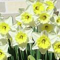 Daffodil Bouquet Spring Flower Garden Baslee Troutman by Baslee Troutman