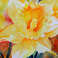 Daffodil by Ruth Harris