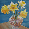 Daffodils And Marbles by Jenny Armitage