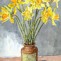 Daffodils In A Pot. by Mike Lester