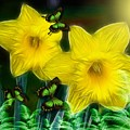 Daffodils In The Garden by Madeline  Allen - SmudgeArt