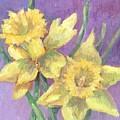 Daffodils by Mary Ann Clady
