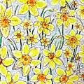 Daffodils by Monique Faella