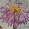 Dahlia At Eastport Me by Donna Walsh