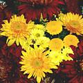 Dahlia Display by Allen Nice-Webb